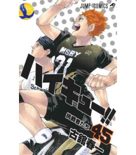 Haikyu!! Band 45