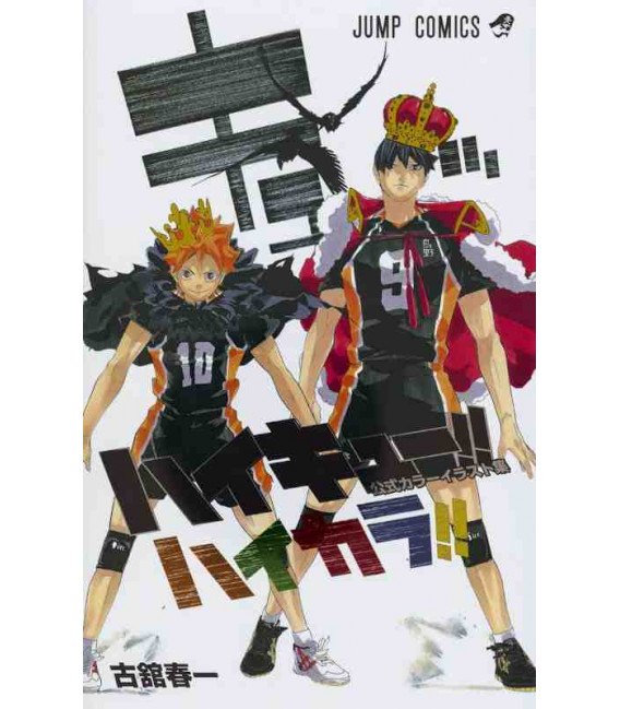 Haikyu!! Color Illustrations